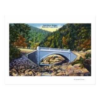 Opinião da fuga do Mohawk da ponte fria do rio Cartão Postal