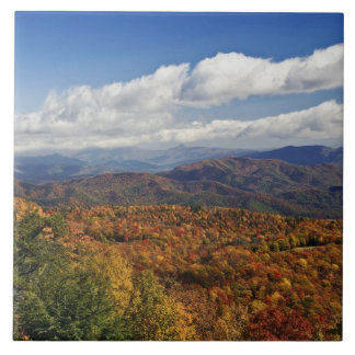 Opinião do outono de montanhas apalaches do sul azulejo quadrado grande