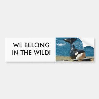Orca: Nós pertencemos no selvagem Adesivo Para Carro