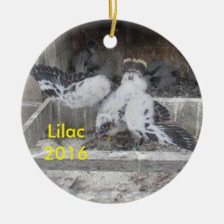 Ornamento 2016 do Lilac