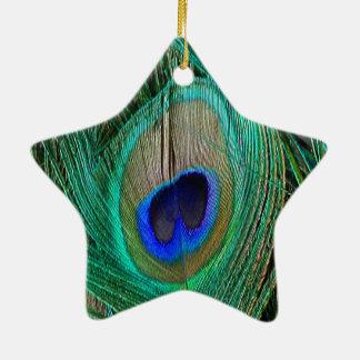 Ornamento azul indiano da estrela de pena do pavão