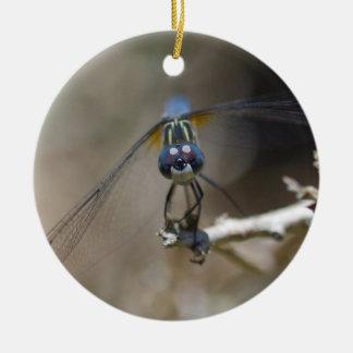 Ornamento da libélula