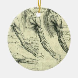 Ornamento De Cerâmica Anatomia do braço e do ombro por Leonardo da Vinci