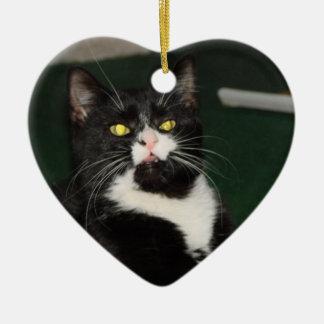 Ornamento De Cerâmica Atitude do gato de Charli