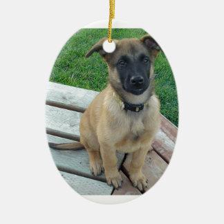 Ornamento De Cerâmica Cão belga de Malinois do pastor