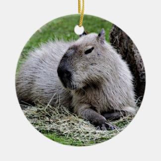 Ornamento De Cerâmica capybara,