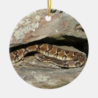Ornamento De Cerâmica Cascavel no parque nacional de Shenandoah