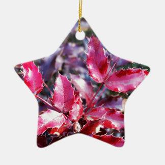 Ornamento De Cerâmica Chuva em folhetos