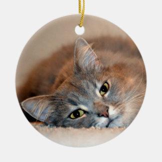 Ornamento De Cerâmica Cinzas, Tan, gato de cabelos compridos branco por