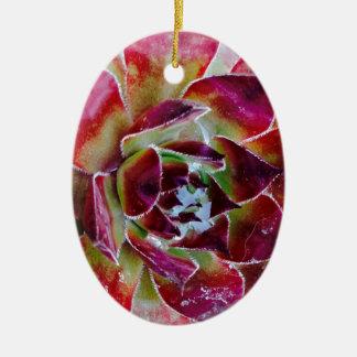 Ornamento De Cerâmica Cores da natureza e formas