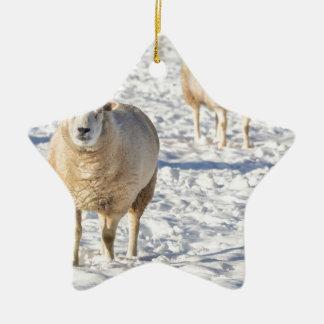 Ornamento De Cerâmica Dois carneiros que estão na neve durante o inverno