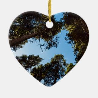 Ornamento De Cerâmica Estrela da floresta