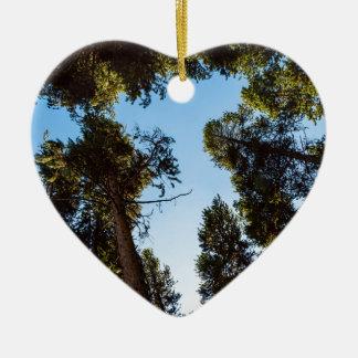 Ornamento De Cerâmica Estrela da floresta do pinheiro