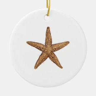 Ornamento De Cerâmica Estrela do mar - estrela de mar do norte
