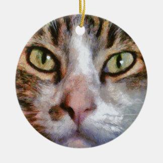 Ornamento De Cerâmica Fim de cabelos compridos do gato de gato malhado