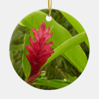 Ornamento De Cerâmica Flor do gengibre vermelho mim