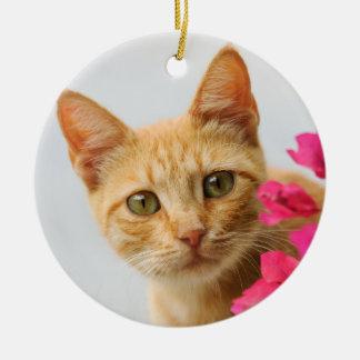 Ornamento De Cerâmica Foto de observação do gatinho bonito do gato do