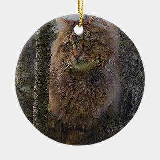 Ornamento De Cerâmica Gato de racum de Maine - gato da árvore