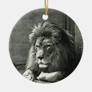 Ornamento De Cerâmica Ilustração do leão