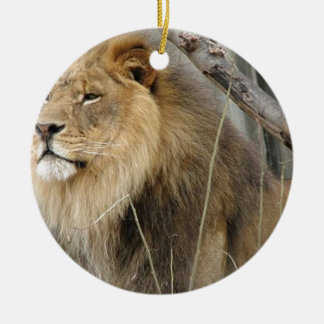 Ornamento De Cerâmica Leão estóico que olha fora na distância