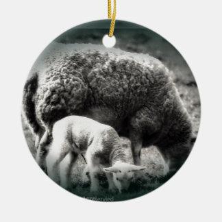 Ornamento De Cerâmica Mono imagem dos carneiros e do cordeiro