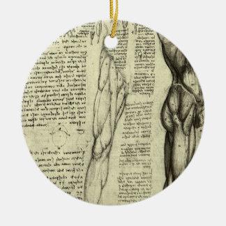 Ornamento De Cerâmica Músculos masculinos da anatomia humana por