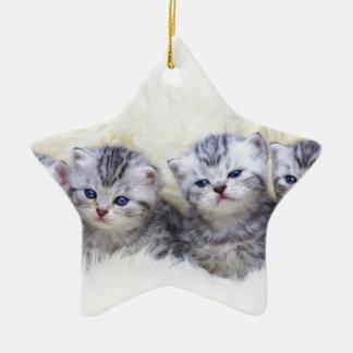 Ornamento De Cerâmica Ninho com os quatro gatos de gato malhado novos em