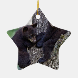 Ornamento De Cerâmica O urso junta a arte bonito de escalada dos animais