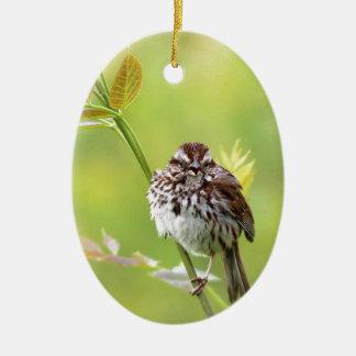 Ornamento De Cerâmica Pardal do canto
