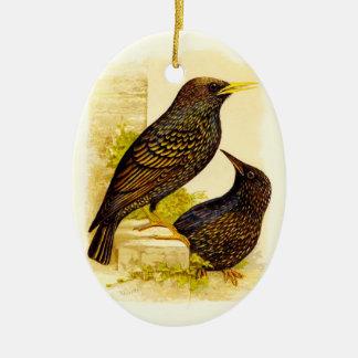 Ornamento De Cerâmica Pares antigos dos pássaros pretos de feriado dos