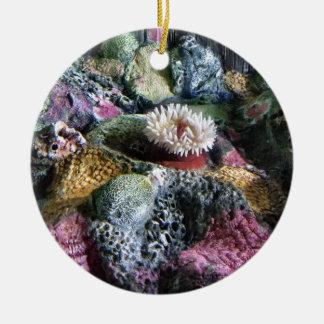 Ornamento De Cerâmica Recife de corais subaquático colorido do aquário