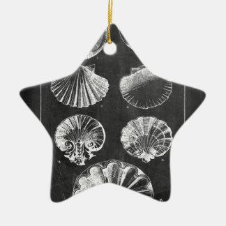 Ornamento De Cerâmica seashells botânicos franceses litorais do quadro