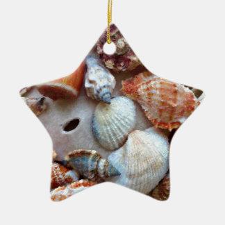 Ornamento De Cerâmica Seashells pelo litoral