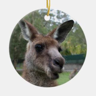 Ornamento De Cerâmica Selfie do canguru