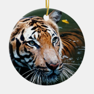 Ornamento De Cerâmica Tigre dos alugueres na água