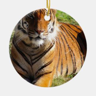 Ornamento De Cerâmica Tigre Malayan dos alugueres