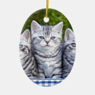 Ornamento De Cerâmica Três gatos de gato malhado de prata novos em cesta
