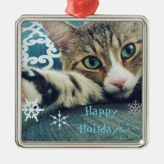 Ornamento De Metal Cartão do feriado do gato de gato malhado do floco