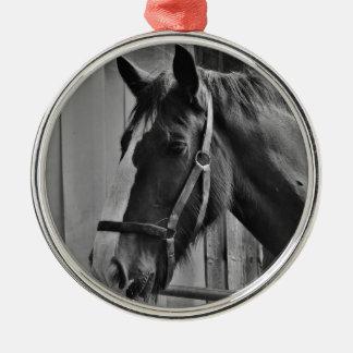 Ornamento De Metal Cavalo branco preto - arte animal da fotografia