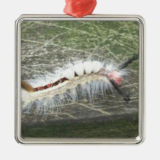Ornamento De Metal O que é ele inseto