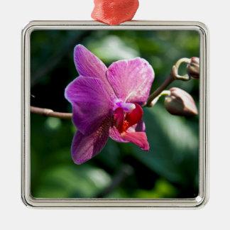 Ornamento De Metal Orquídea mágica