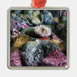 Ornamento De Metal Recife de corais subaquático colorido do aquário
