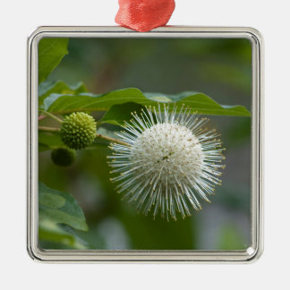 Ornamento De Metal Wildflower branco de Buttonbush