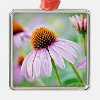 Ornamento De Metal Wildflower colorido do echinacea