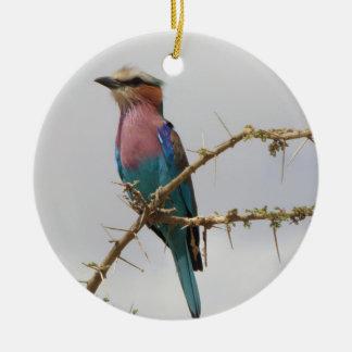 Ornamento do feriado do rolo de Breasted do Lilac