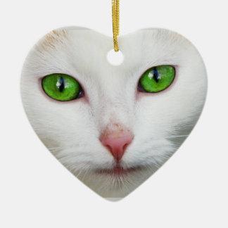 Ornamento do gato
