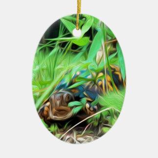 Ornamento norte-americano da tartaruga de caixa