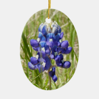 Ornamento pintado do Bluebonnet de Texas