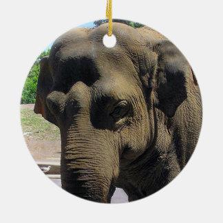 Ornamento redondo do elefante