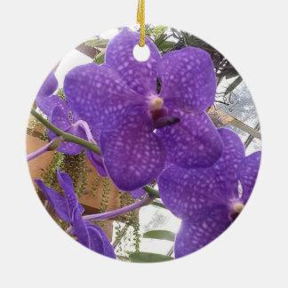 Ornamento roxo do círculo da orquídea